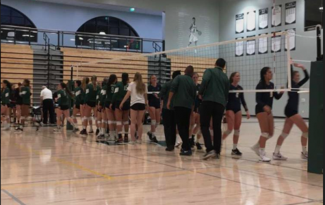 Volleyball's winning streak snapped in tough loss to Palo Alto