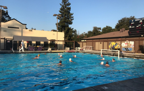 Water polo dominates throughout annual Roche tournament