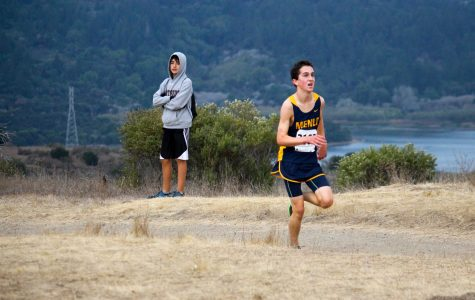 Cross country sends multiple runners to state meet