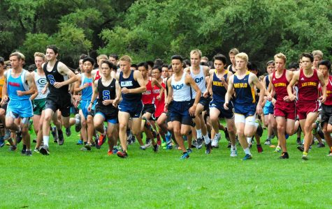 Cross country dominates at WBAL finals