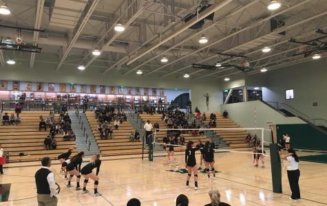 Volleyball taken down in CCS semifinal vs top ranked Mitty