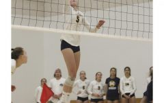 Girls Volleyball Falls to Palo Alto High School
