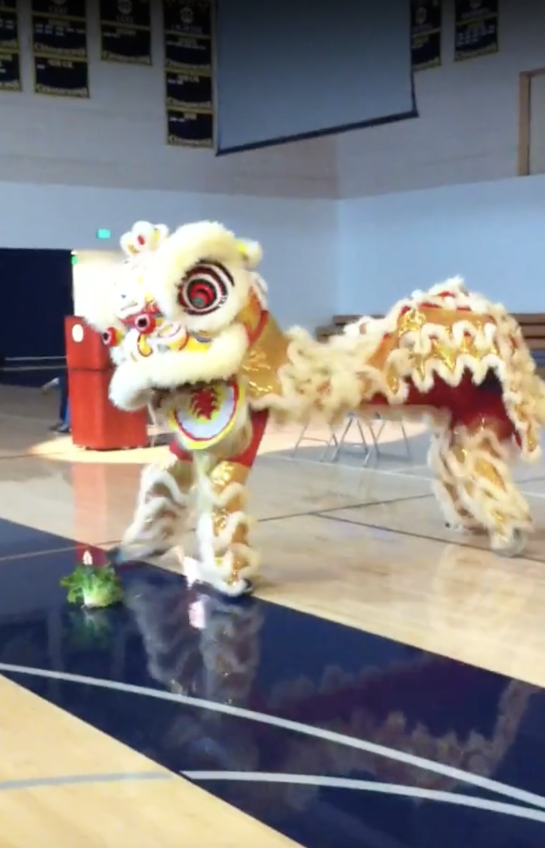 Mandarin students perform the lion dance in the Upper School gym during assembly. The dance is said to chase away evil spirits and bring fortune in the New Year. Photo courtesy of Mingjung Chen.