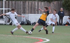 Knights Fall to Rival SHP