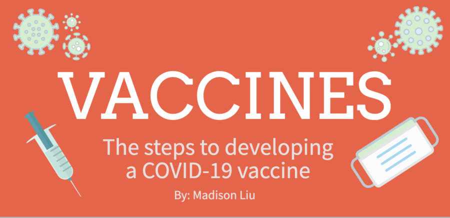 Creating a vaccine for any disease takes about 10-15 years; though this process will be expedited for COVID-19, it will likely still take over a year. Staff photo: Madison Liu.