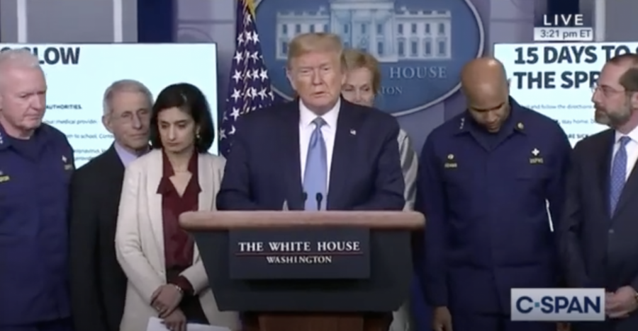 President Donald Trump addresses the pandemic at a press conference. Photo: C-SPAN.
