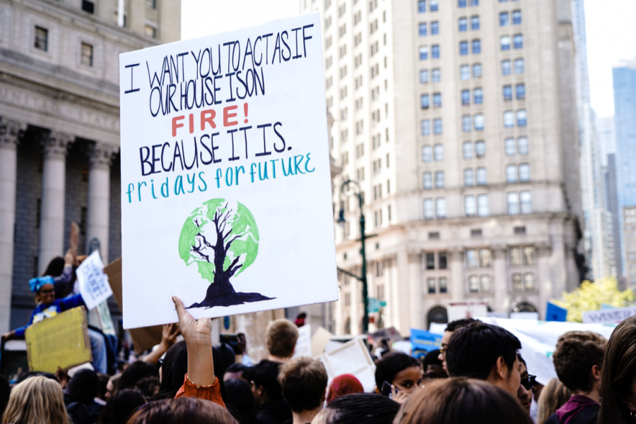 Menlo's student-let Climate Coalition has worked on four major projects this semester. Creative Commons photo: Katie Rodriguez on Unsplash.
