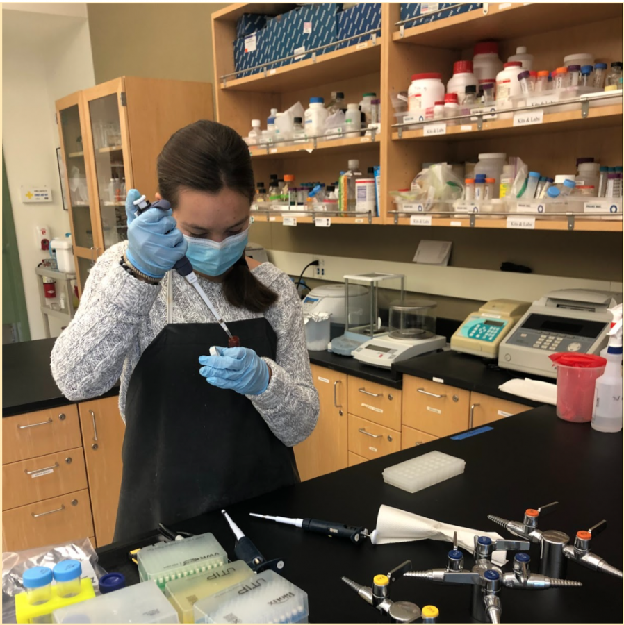 In the Biotechnology Research class, senior Camille Porteous performs a COVID-19 test on synthetic control RNA samples. Staff photo: Alea Marks.